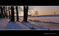 Winterse Shadow....... (betuwefotograaf) Tags: trees winter snow holland shadows explore op schaduw zn mooist winterse