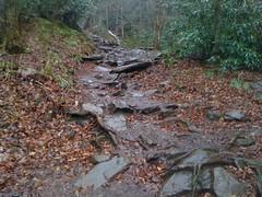 Chimney Tops Trail 1