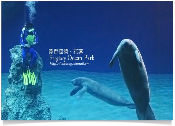 花蓮海洋公園一日遊25