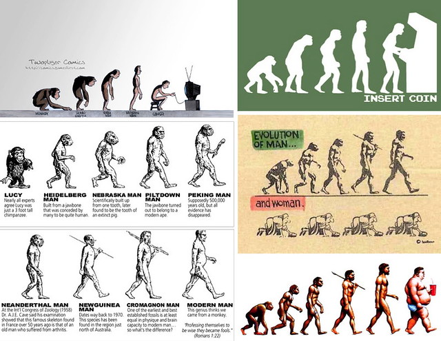 Diverses parodies de The Road to Homo Sapiens.