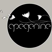 Apegenine_Organization_Logo