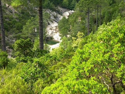 Le ruisseau de Mela depuis le sentier