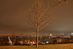 A Charlie Brown Christmas Tree. (pmarella) Tags: city longexposure sky urban usa color building tree beautiful skyline night clouds landscape lights newjersey jerseycity solitude cityscape shadows nj silhouettes christmastree whatever viewlarge pmarella lamplight hoboken donttrythisathome hudsoncounty whileyouweresleeping amomentintime dancinginthedark throughmyglasseye sigma1770mm riverviewpkproductions wanderingatnight myeyeshaveseenthis eos7d