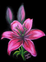 Pink Lily by Denise A. Wells (Denise A. Wells) Tags: pink flower art girl lady painting artwork colorful pretty acrylic lily bright girly nativeamericanartist femininetattoo tattoodesignsforwomen deniseawells prettytattoodesigns girlytattoodesigns prettytattoodesign girlytattoodesign eleganttattoodesigns femininetattoodesigns denyceangel40yahoocom prettybeautifultattoo prettytattoodesignsforladys
