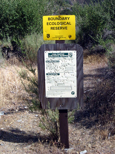 Coal Canyon Hike 3340