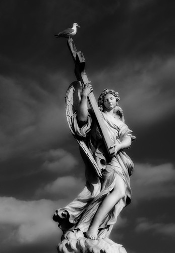 フリー画像| 人工風景| 彫刻/彫像| 天使/エンジェル| モノクロ写真| カモメ|      フリー素材|