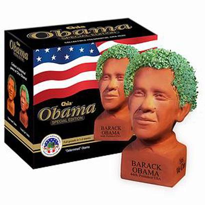 obama_Chia Pet 2