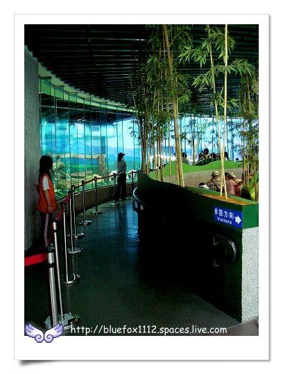 090627台北市立動物園06_參觀走廊