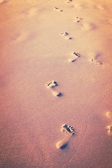 Pasos (Landahlauts) Tags: beach andaluca playa andalucia andalusia andalusien conil janda andalusie andaluz alandalus conildelafrontera andaluzia   oceanoatlantico  andaluzja  andaluzio                   comarcadelajanda  andalouzia andalusiya     playadelafuentedelgallo