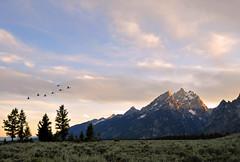 Teton Range, Sunset, #33 (andertho) Tags: sunset mountain delete10 delete9 delete5 delete2 nationalpark nps delete7 delete8 delete delete4 save save2 explore teton frontpage tetonrange grandtetonnationalpark