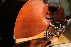 Cello String Instrument IMG_3759