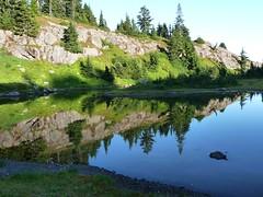 nice ponds