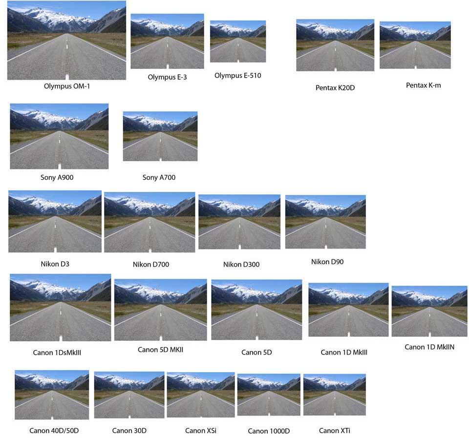 viewfinder comparison