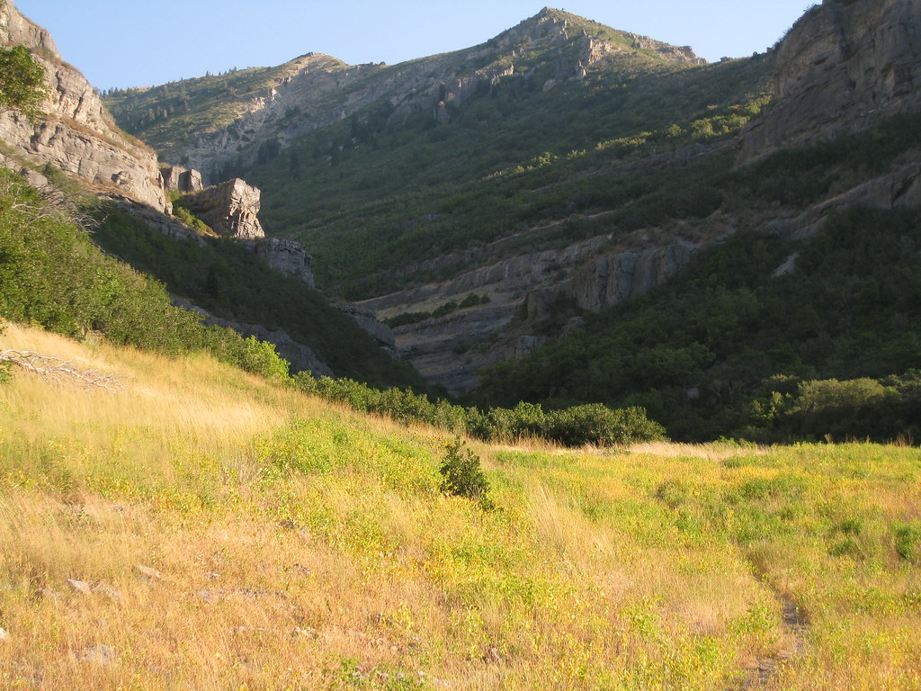 A Side Fork of Provo Canyon