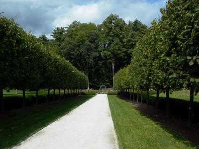 lime walk