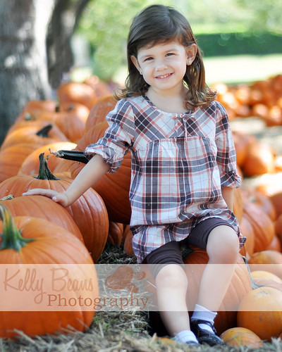 Picture 205 watermark copy