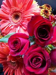 Flowers_1009c