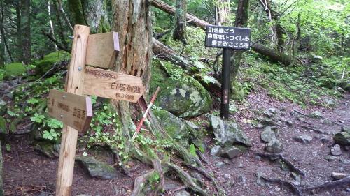 北岳2 (4).JPG