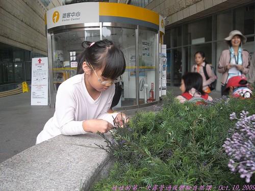 katharine娃娃 拍攝的 5集合前的獨處。