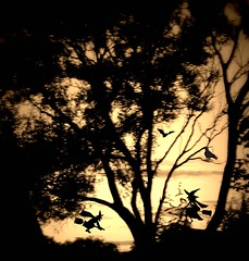 The witching night approaches (*Psycho Delia*) Tags: trees sky halloween silhouettes spooky reality witches hypothetical sharingart