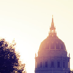 city hall (Max Nathan) Tags: sf sanfrancisco leica city autumn usa sunlight white leaves yellow gold hall haze afternoon purple symmetry spire dome bayarea getty caliornia
