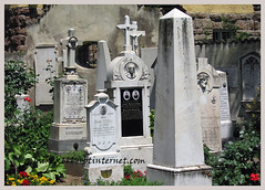 bolzano 2005 (mikek666) Tags: friedhof church abbey temple cathedral cemetary cementerio kathedrale catedral icon monastery eliza ikon monasterio templo icono klooster kloster ermita tempel kathedraal begraafplaats cimitero mosteiro cattedrale icona tempio tapınak abbazia monestir abdij abadia ícone cementiri abtei katedrala tempelj μοναστήρι manastır tenplu икона şehitliği samostan νεκροταφείο μονή ναόσ καθεδρικόσναόσ εικονίδιο