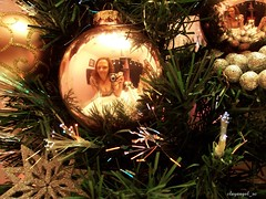 Reflections *December Diary 1 0f 31* (clayangel_sc) Tags: snowflake christmas pink decorations woman selfportrait tree me colors girl angel self lights mirror glow shine bokeh digitalart twinkle christmastree christmaslights redhead ornament curly ornaments sp fiberoptictree selfie browneyedgirl eoshe clayangelsc theessenceofwoman alookintomylife decemberdiary2009project decemberdiaryproject2009