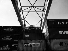 Container & Terminal (dongga BS) Tags: blackandwhite bw 120 mamiya film analog port harbour basel sw schwarzweiss hafen ilford mamiya645 id11 analogous 0003 ilfordfp4125 selber mamiya6451000s 120er rheinhafenbasel 45mm128 rhineport portofswitzerland mamiyacamera6451000s