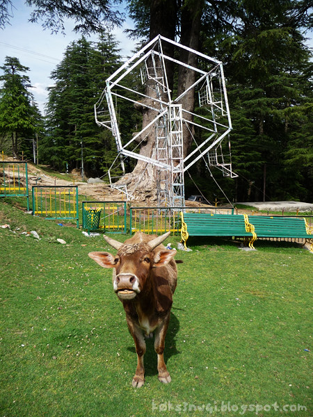 World's Smallest Ferris Wheel at Khajjiar