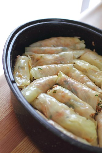 Cabbage rolls by Adventuress Heart
