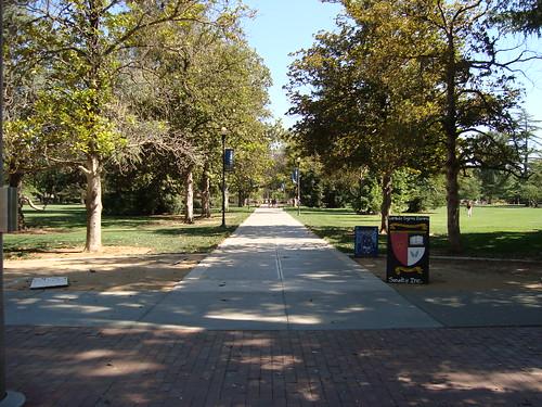 UC Davis Quad