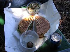 Molinari's Lunch in Washington Park (guillotinehead) Tags: sanfrancisco pepper sandwich orangina tortellini pastasalad