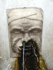 swine flu (art crimes) Tags: italy sculpture water statue mantova fontana italie mantua fountin swineflu