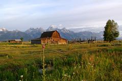 Standing Tall (mstrwhew) Tags: landscape prarrie mormonrow corrals antelopeflats oldbarngrandtetons grandtetonnationalparkpentaxk20d