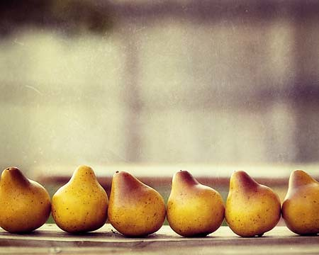 pears in a row SMALL FILE da AmeliaKayPhotography.