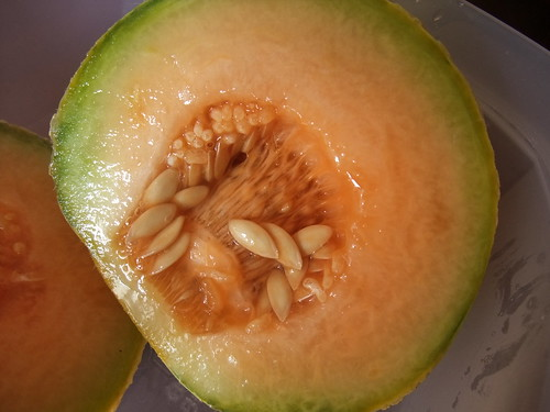 Muskmelon from my Garden 8/27/09