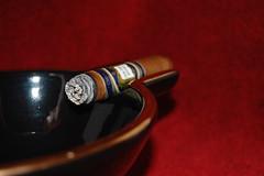 DSC_0304 (wwhite72082) Tags: cigar pdr