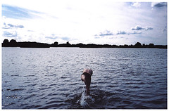 leap (toby price) Tags: summer lake swim dive splash attenboroughnaturereserve
