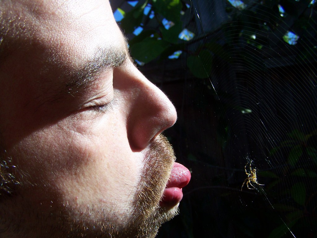 sep 374 Johnny attempting to lick spider