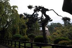 2009-10-03 (hagihara) Tags: castle aomori hirosaki