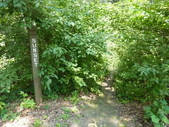 Awful trail at Mississippi Palisades (sfgamchick) Tags: statepark sign illinois savanna greatriverroad illinoisstatepark mississippipalisades sunsettrail mississippipalisadesstatepark
