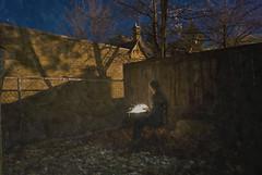 115/365 -- Lighting Up (mtronnow (msthackeray)) Tags: light portrait night outside backyard desk 365 sparkler