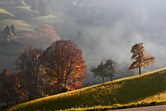 Couleurs d'automne (blogspfastatt (over 1.700.000 views)) Tags: autumn light mountain color colour fall beauty fog montagne automne season nice colorful lumire sunday soe couleur brume pictureperfect farben myst saison kolor blueribbonwinner swiatlo enjoyinglife bej fineartphotos pfastatt flickrdiamond theperfectphotographer top20autumn goldstaraward top20autumn20 jeanpaulherzog blogspfastatt
