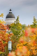 Autumn colours surround Utah State Capitol