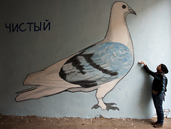 The Clear one /  (Tr@mb) Tags: pigeon murals ukraine graffity kharkov gamlet pushkinskaya