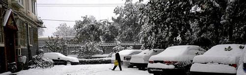 初冬好大雪