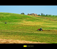 Little FarmVille (Sandro V-R ) Tags: verde lights photo nikon foto compo sharp campagna giallo colori sicilia sandro paesaggio afa trinacria tiltshift frumento rurale siculo trattori mietitura nikon70300mmvr d700 sandrovinci