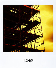 "#Dailypolaroid of 26-5-11 #245 #fb • <a style=""font-size:0.8em;"" href=""http://www.flickr.com/photos/47939785@N05/5767525364/"" target=""_blank"">View on Flickr</a>"