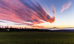 Magical sunset and thick clouds (tomaskriz1) Tags: trees pink orange grass czechia moravian sunset sunlight sky season scenic scenery rural plant outdoor nature magical landscape land idyllic horizon green field farm evening environment day countryside country cloudy clouds cloud beauty beautiful background agriculture