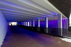 _DSC2654 (durr-architect) Tags: tunnel vision herman kuijer light installation dutch underpass zutphen netherlands architecture art designer artist colourful luminescent motorists cyclists pedestrians time space kcap baljon baauw royal haskoning dhv bam prorail train railway